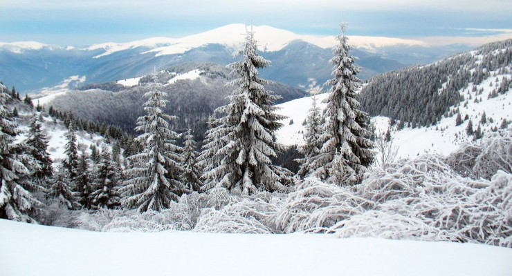 Rest in Carpathians in the winter
